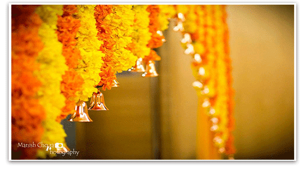 Marigold The Perfect Indian Wedding Flower By 3production